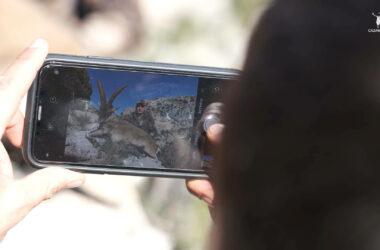 Imagen capturando una fotografía con un trofeo de macho montés de beceite