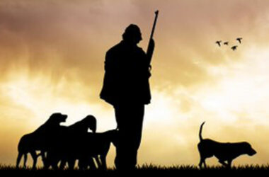 Silueta de cazador con perros