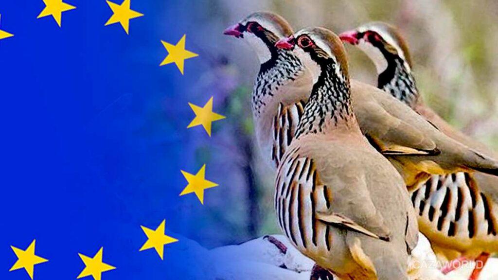 Perdiz-roja-Union-Europea