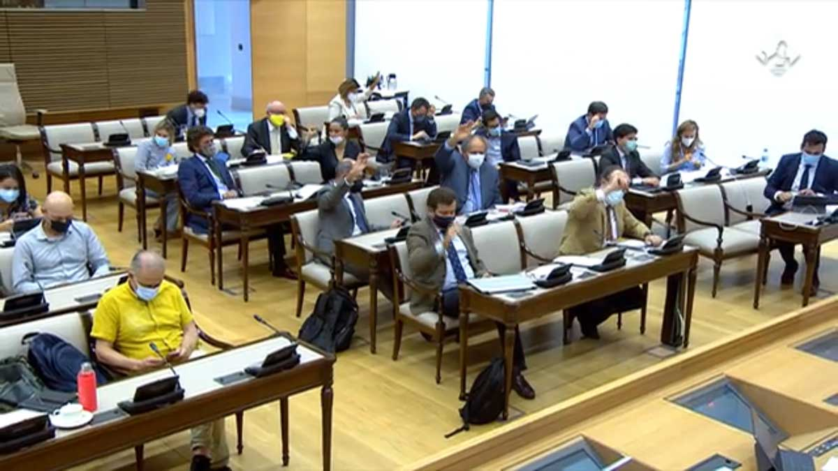 Comisión de Transición Ecológica tórtola