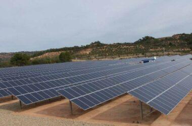 huerto parque planta solar
