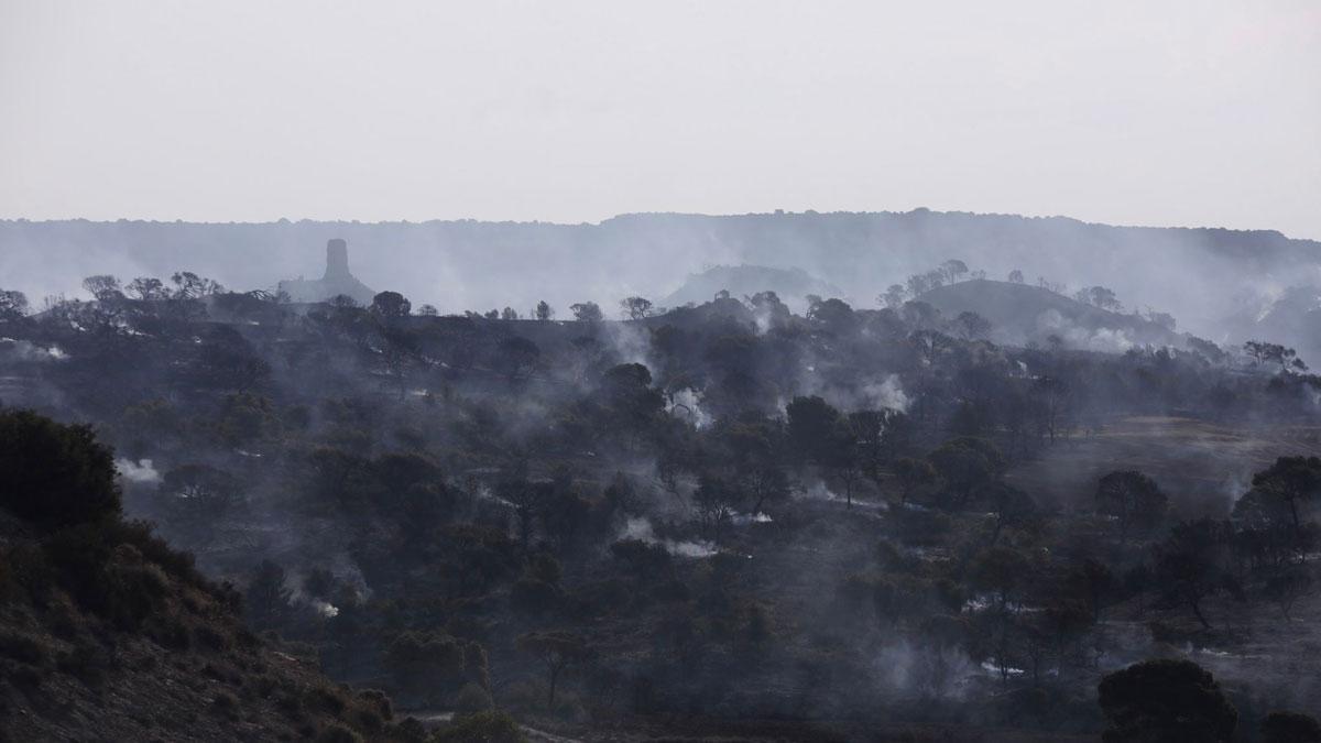 Foto del incendio del vedado de Eguaras, con el castillo de Peñaflor al fondo. Autor: J. M. Agramonte. Adecana