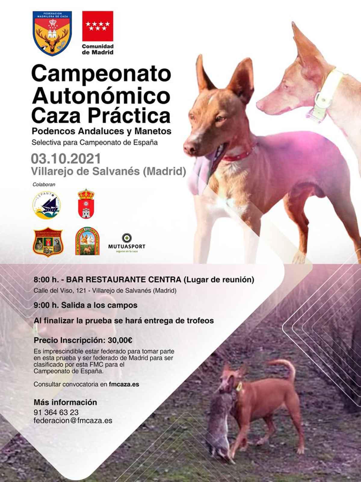 Campeonato autonómico de podenco andaluz y maneto