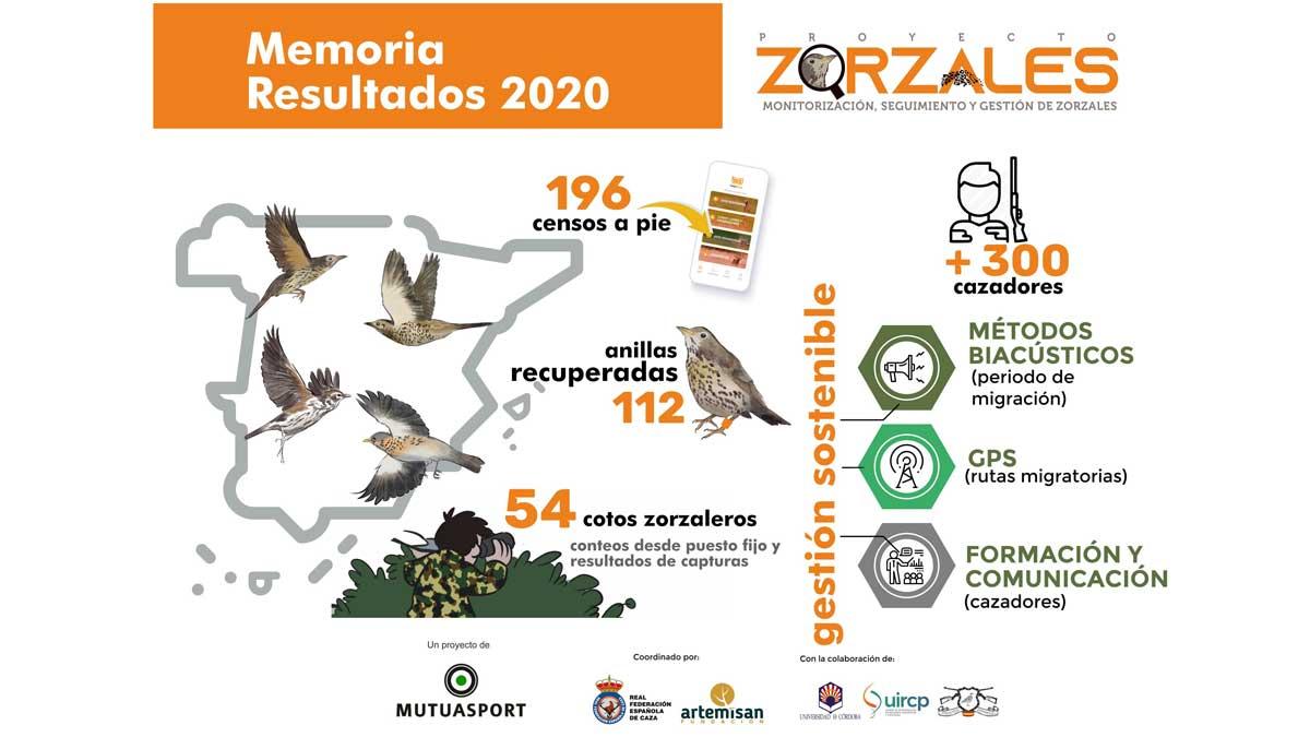Proyecto Zorzales
